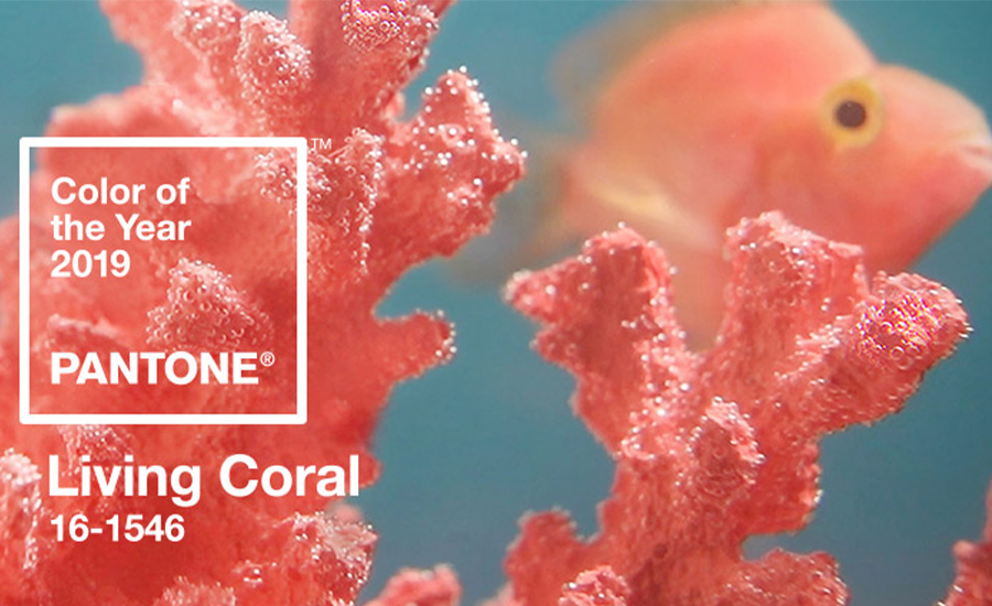 2019 Yılının Pantone Rengi: Living Coral 16-1546