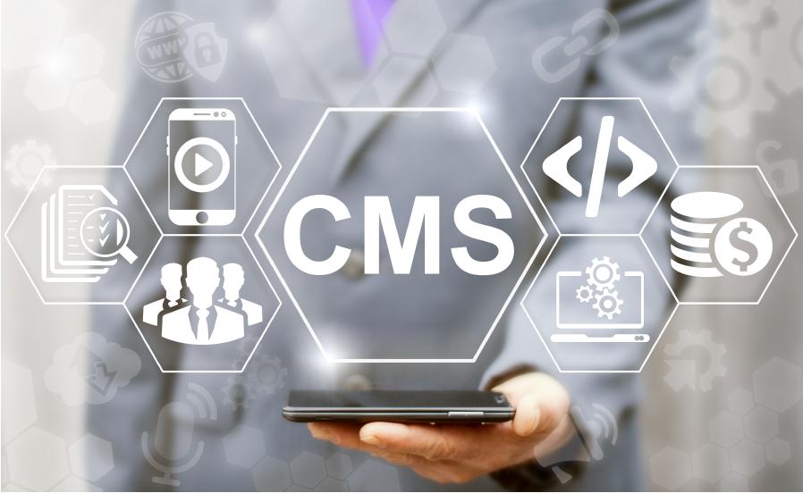 İçerik Yönetim Sistemleri (CMS) Nedir?